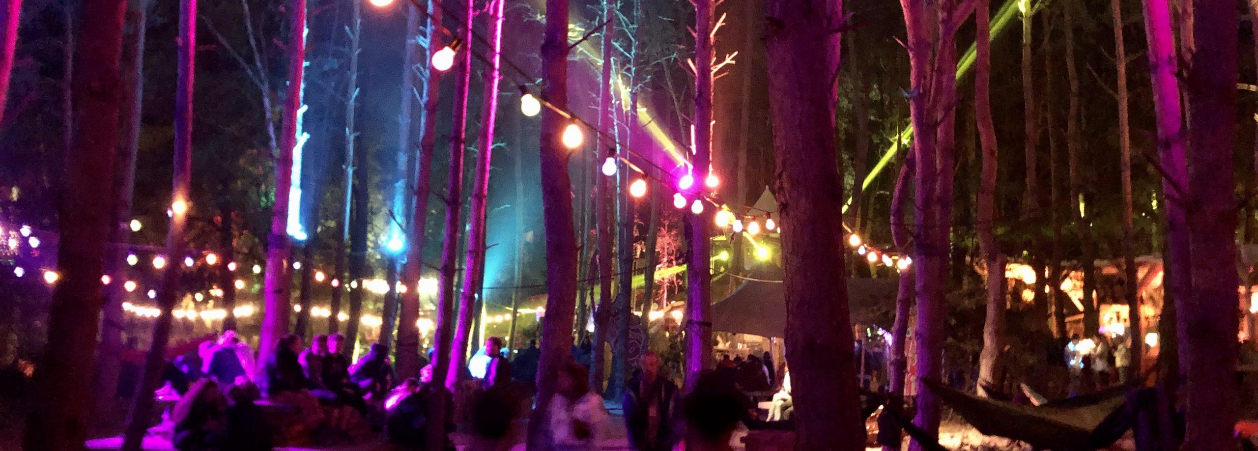 Festivals 2021?